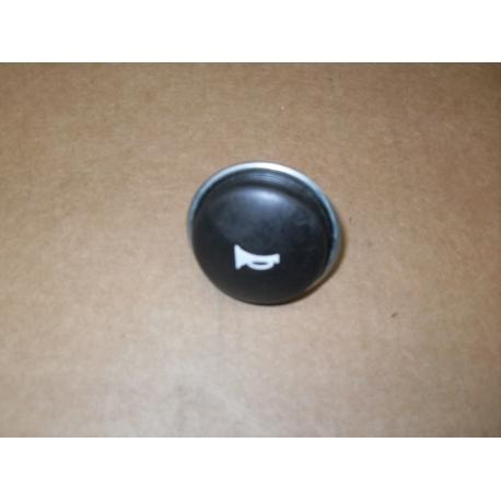 horn,button