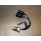 switch thermostatic